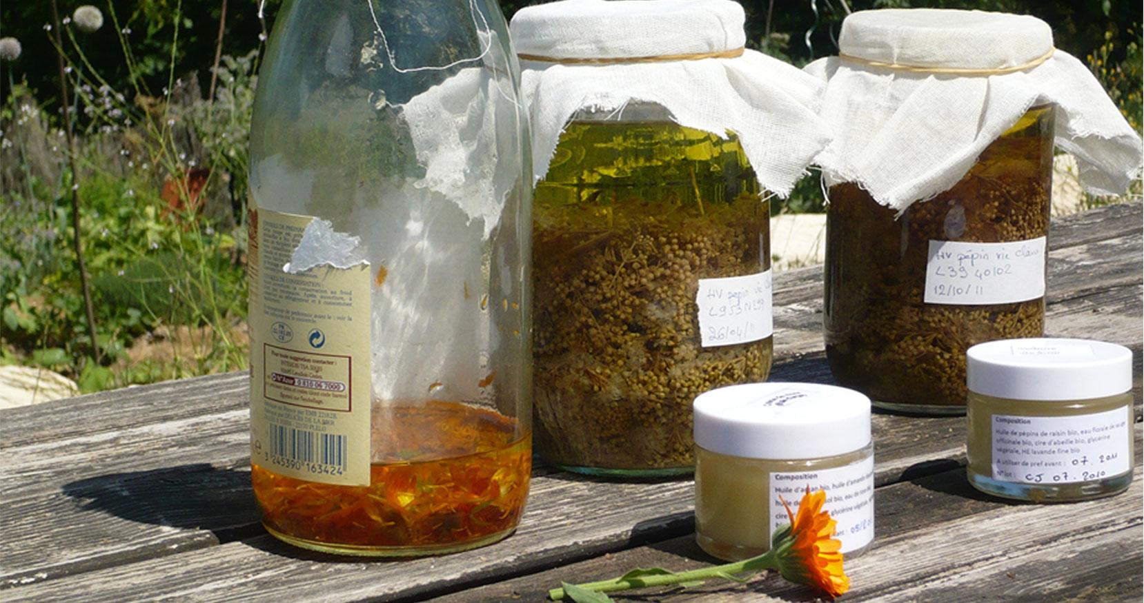 photo huiles de macération de plantes